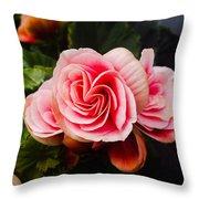 Double Begonia Throw Pillow