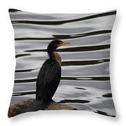 Double-crested Cormorant 20121101_128 Throw Pillow