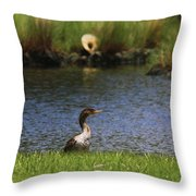 Double-crested Cormorant 3 Throw Pillow