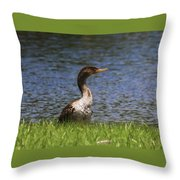 Double-crested Cormorant 4 Throw Pillow