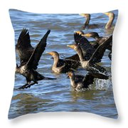 Double Crested Cormorants Throw Pillow