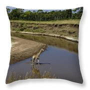 Double Crossing Throw Pillow