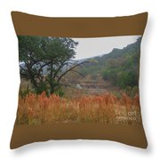 Double D Falls Throw Pillow