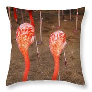 Double Dip Throw Pillow