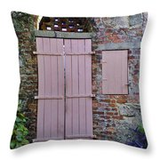 Double Doors And A Window Throw Pillow