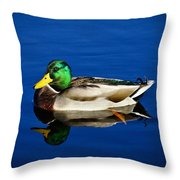 Double Duck Throw Pillow