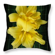 Double Jackpot Daylilies Throw Pillow