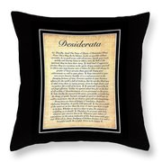 Double Matted Fossilized Desiderata Throw Pillow
