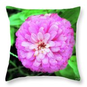 Double Pink Zinnia Throw Pillow