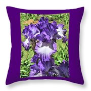 Double Ruffled Purple Iris Throw Pillow