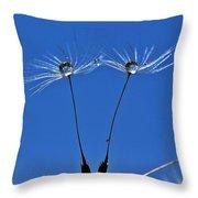 Double Sky Dandelion Throw Pillow