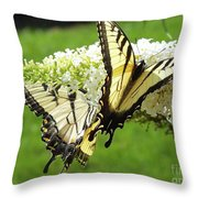 Double The Pleasure - Eastern Tiger Swallowtails Throw Pillow