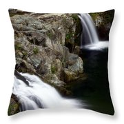 Double Twin Throw Pillow