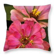 Double Vision In Pink Throw Pillow
