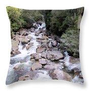 Doubtful Sound Throw Pillow by Joyce Woodhouse