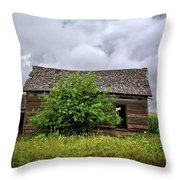 Dougherty Country Throw Pillow