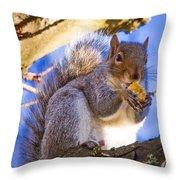 Douglas Squirrel Eating Throw Pillow