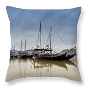 Douro Throw Pillow