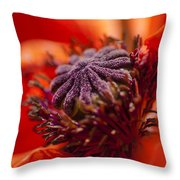 Douze Throw Pillow