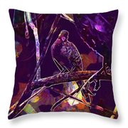 Dove Birds Animals Nature  Throw Pillow