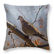 Dove On A Branch Throw Pillow