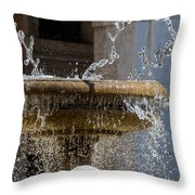 Water Of The Doves Throw Pillow