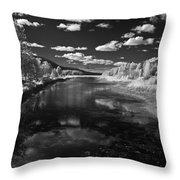 Dover Slough 2 Throw Pillow