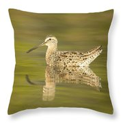 Dowitcher Reflection I Throw Pillow