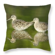 Dowitcher Reflections Throw Pillow