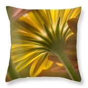 Down Among The Daisys Throw Pillow