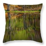 Down At Pecks Pond Throw Pillow