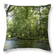 Down Beside Where The Waters Flow Throw Pillow
