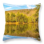 Down By The Lake Throw Pillow