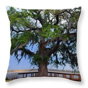 Down By The River Side Throw Pillow
