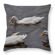 Down Covered Cruisers Throw Pillow