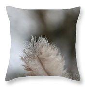Down Feather Throw Pillow