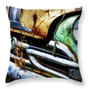 Down In The Dumps 1 Throw Pillow