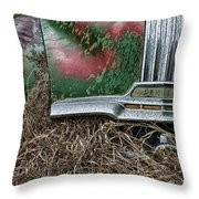 Down In The Dumps 19 Throw Pillow