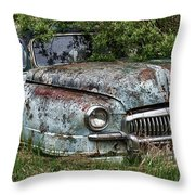 Down In The Dumps 20 Throw Pillow