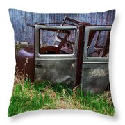 Down In The Dumps 21 Throw Pillow