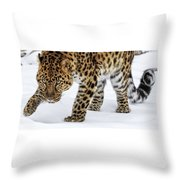 Down Low And Stealthy D4788 Throw Pillow
