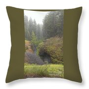 Down Pour At Boulder Cave Throw Pillow