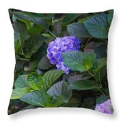 Down The Hill Throw Pillow