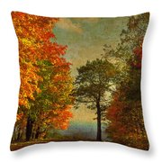 Down The Mountain Throw Pillow