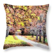 Down The Way Throw Pillow