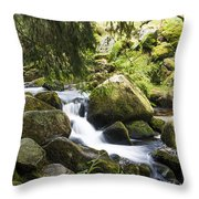 Down To The River Throw Pillow