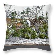 Down Trees Throw Pillow