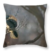 Downey Woodpecker Throw Pillow