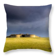 Downhill Demense Hall In Gold Throw Pillow
