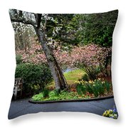 Downhill Landscape Scene Throw Pillow